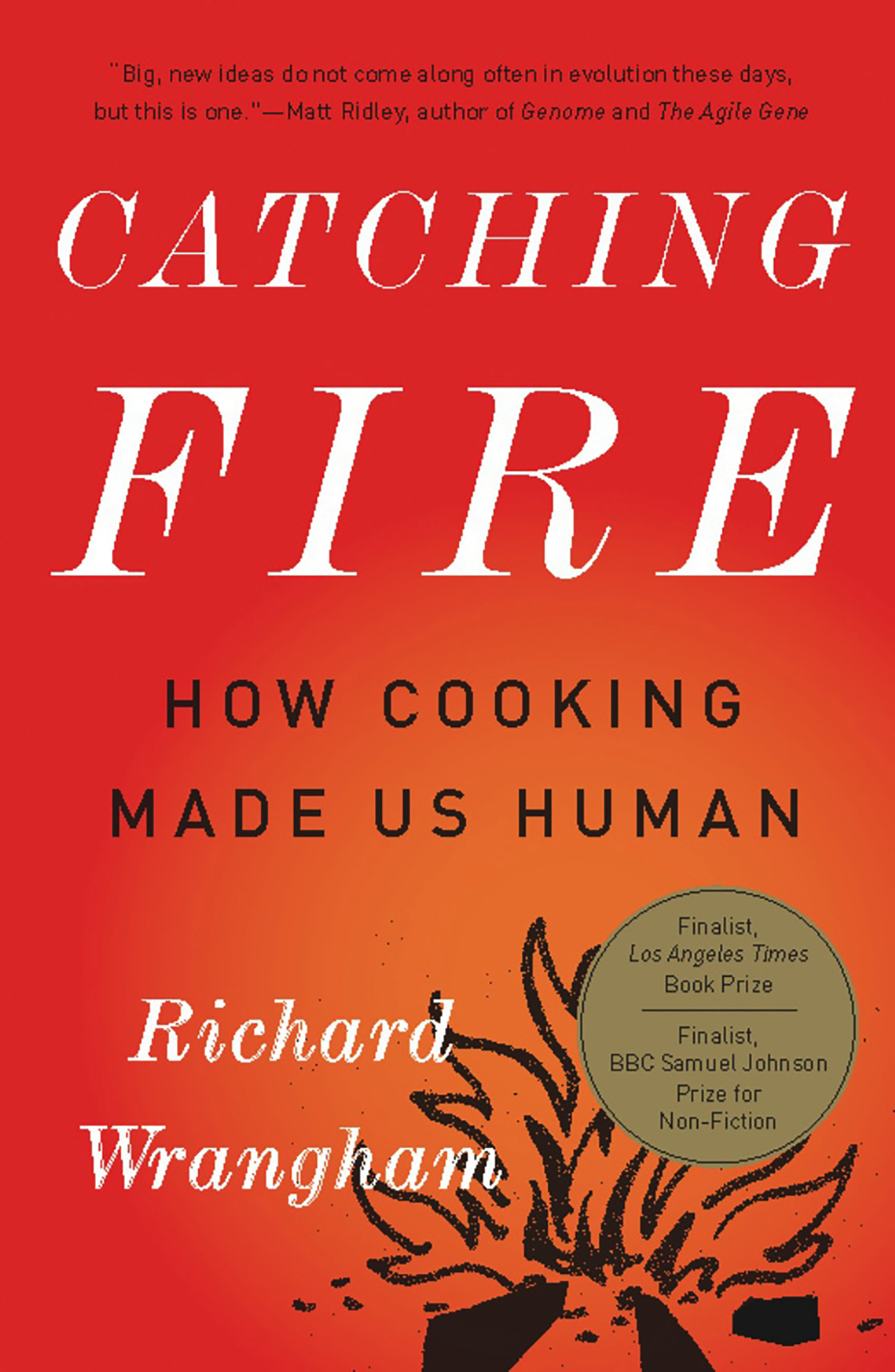 Book Catching Fire