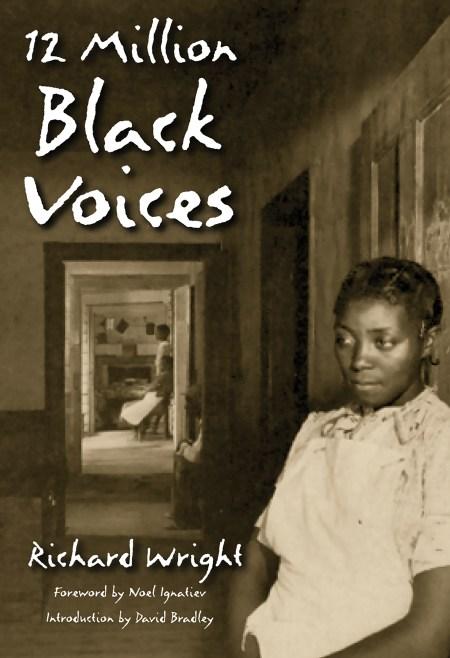 12 Million Black Voices